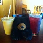 Bear at Vienna